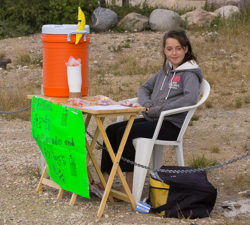 northernmost lemonade stand in world about degrees downs jim