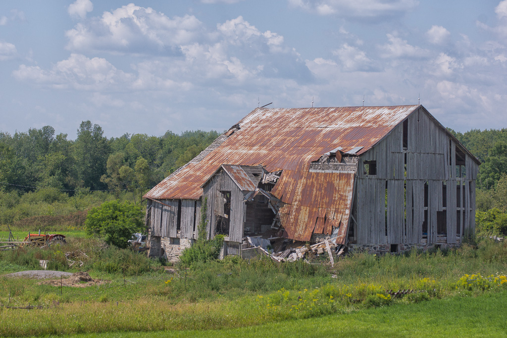 barnyard blues enlarge to see rot decay author d downs jim