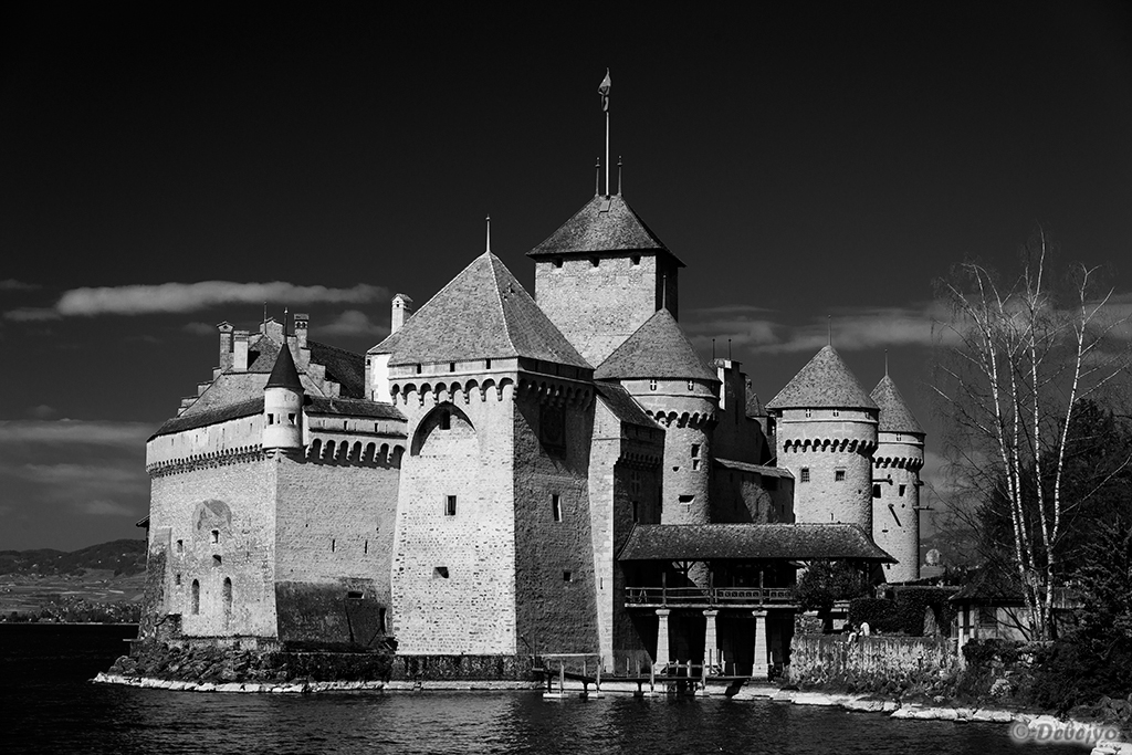 the chateau on lake geneva author chakraborty deb debejyo