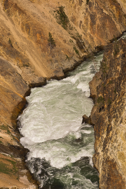 yellowstone river rapids author downs jim
