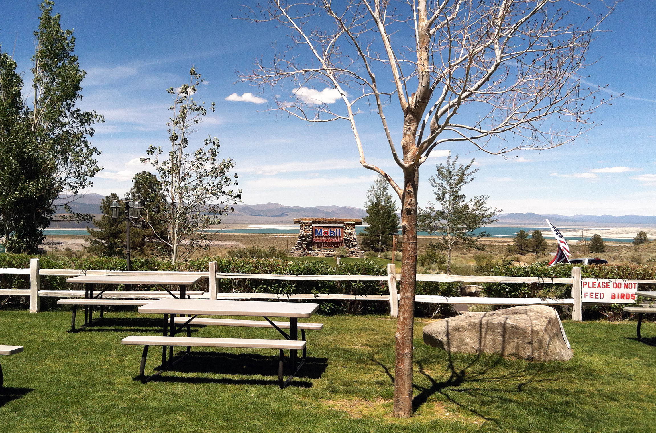 the mobil view of mono lake author hull ray
