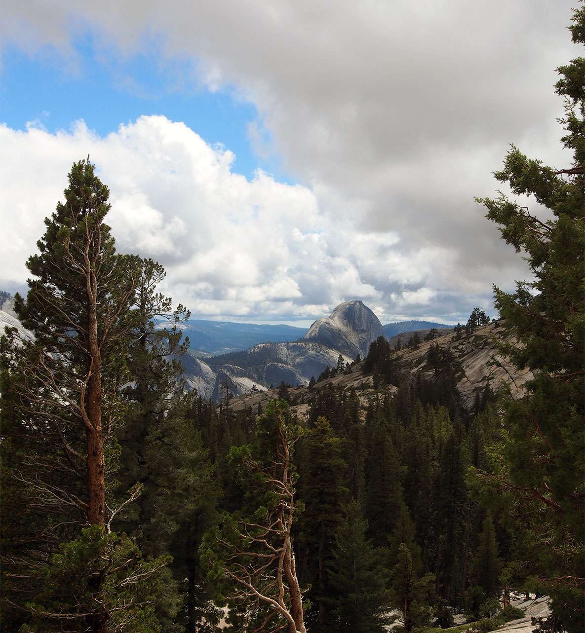 olmstead pt view of half dome author hull ray