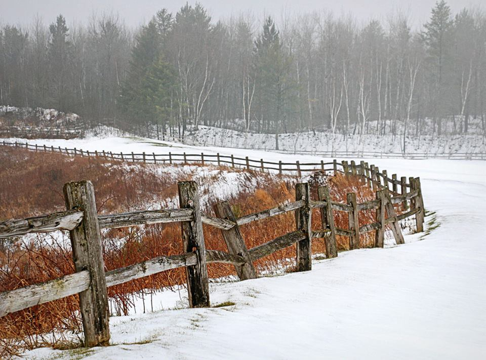 foggy winter morning landscape along the old fence pluskwik paul