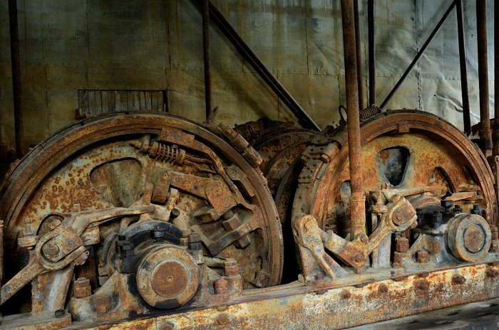colours and shapes in the dredge author melia way wayne