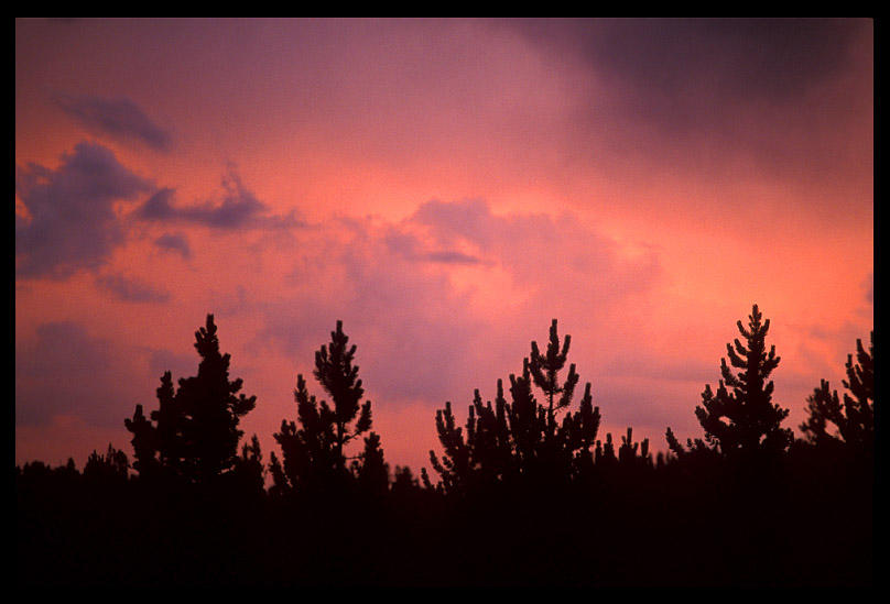 western sky from wright creek author ernst brian