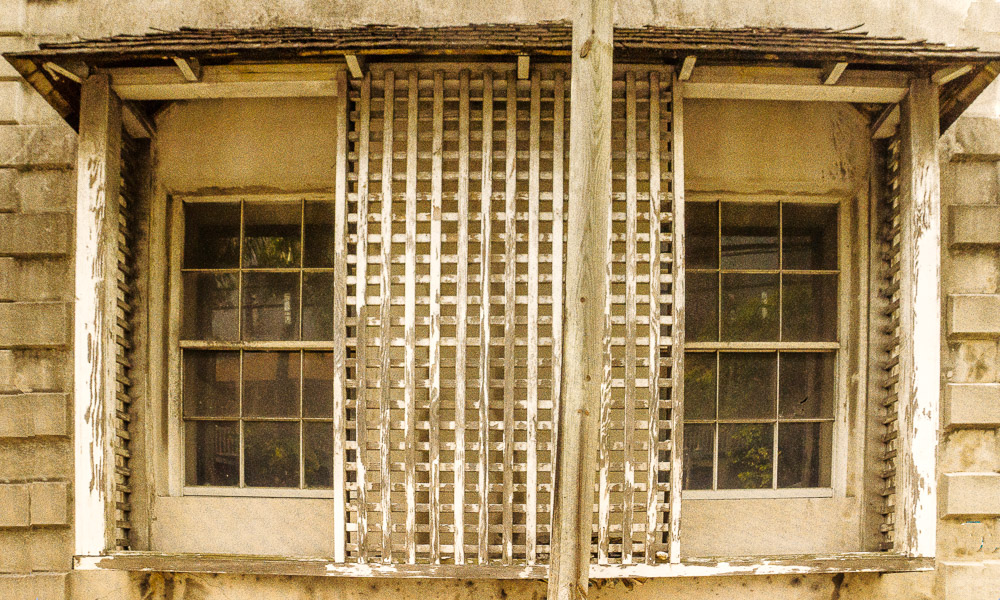 tropical windows see large author downs jim