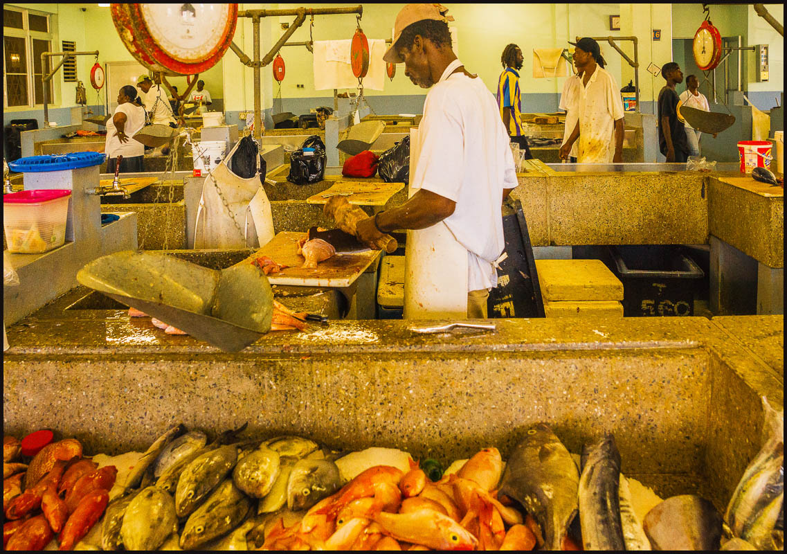 the st vincent fish market see large author down downs jim