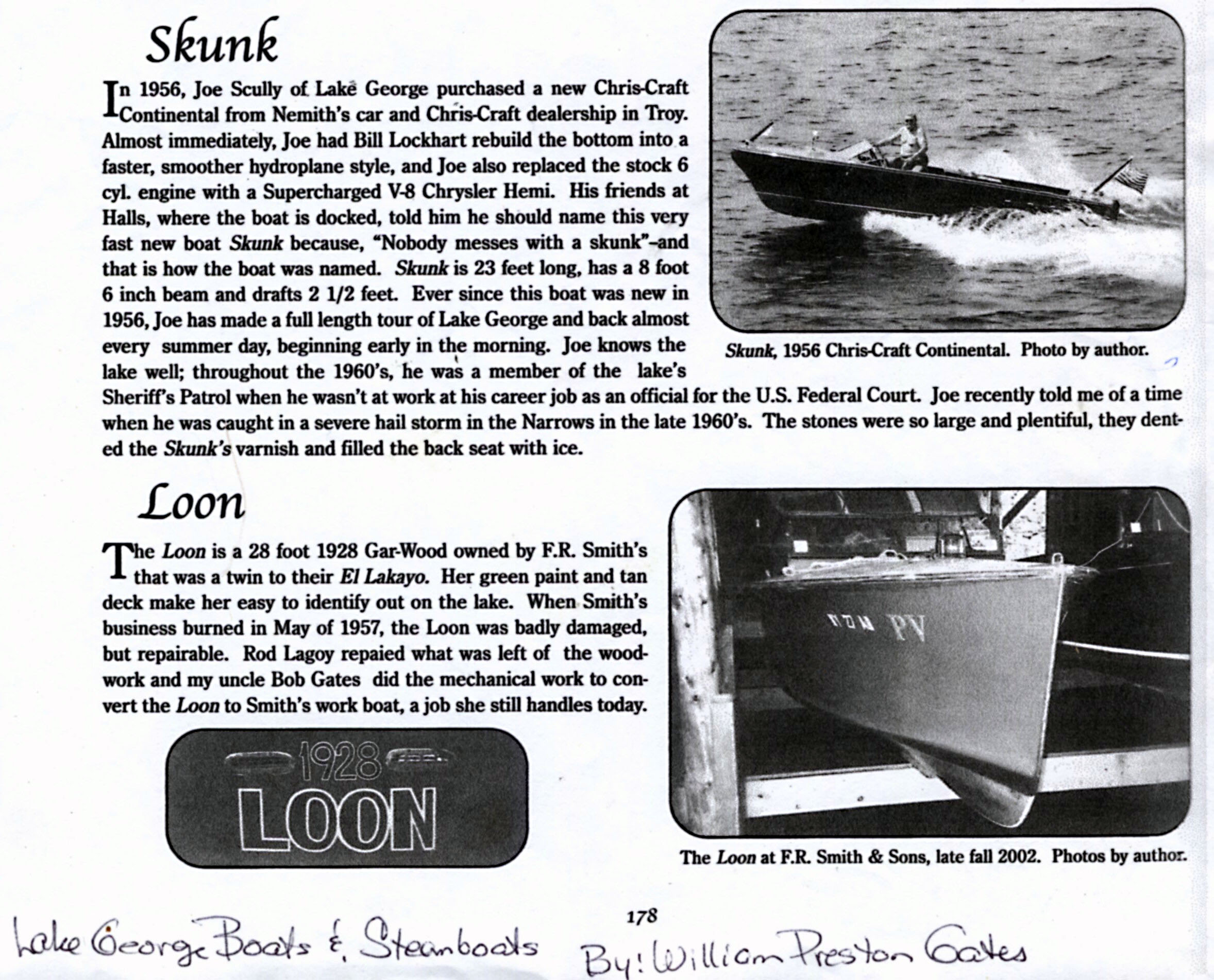 skunk in w p gates lake george boats and steamboa hull ray