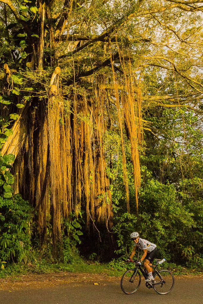 sunset climb on oahu large for detail author dow downs jim