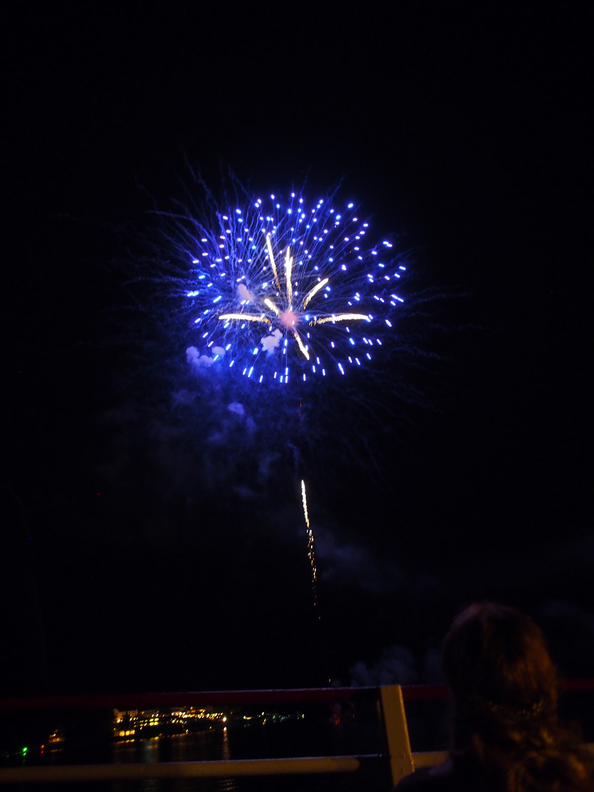 fireworks over the sagamore author hull ray
