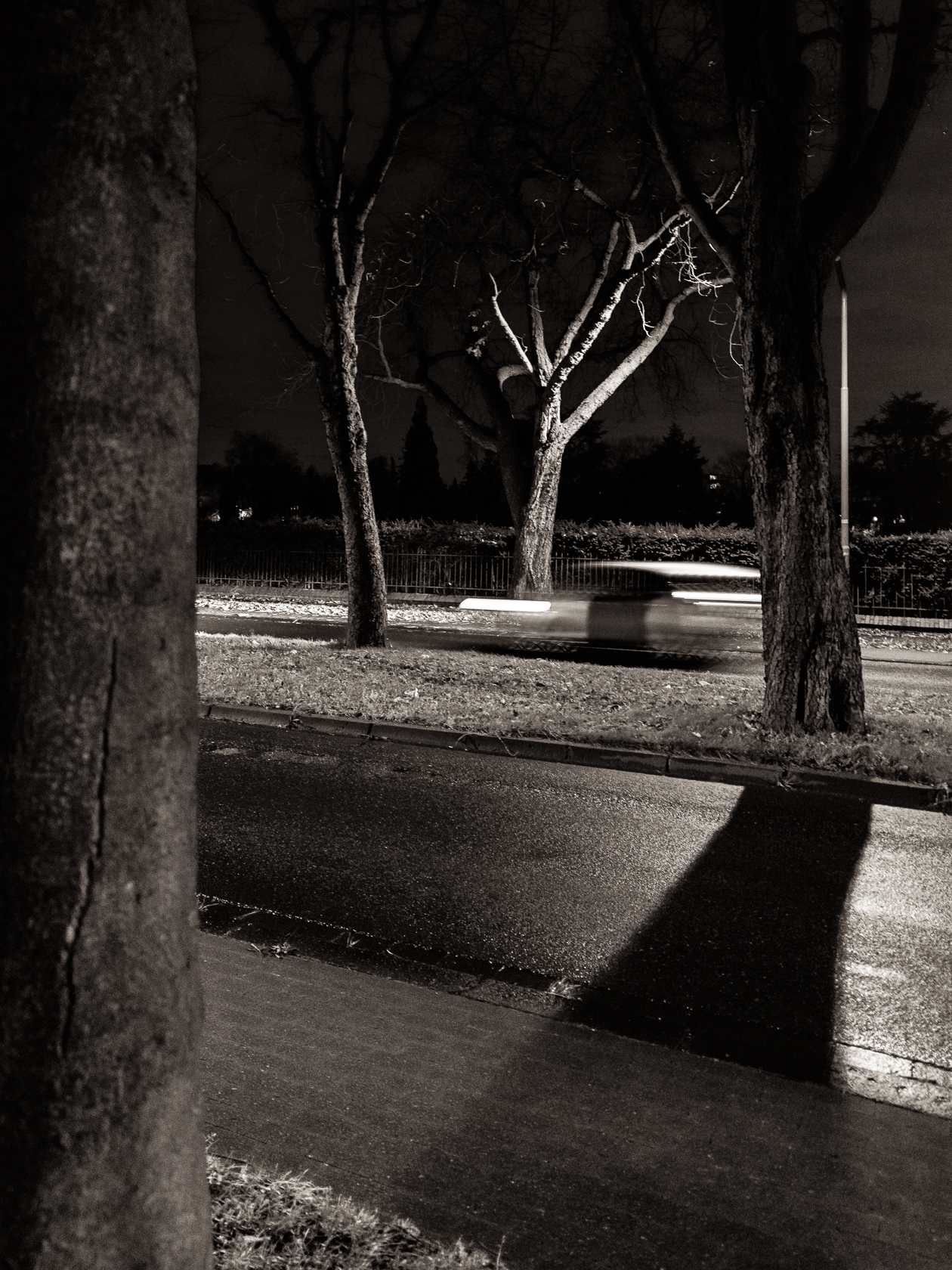 night alley author arnold wolfgang