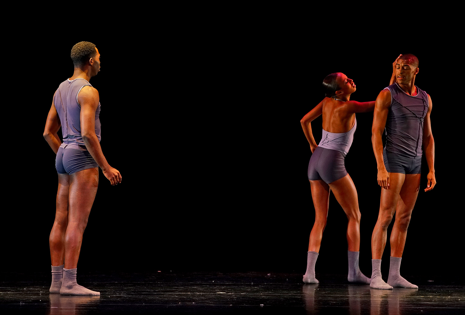 choosing alvin ailey dsc aw author sava gregory a and verena