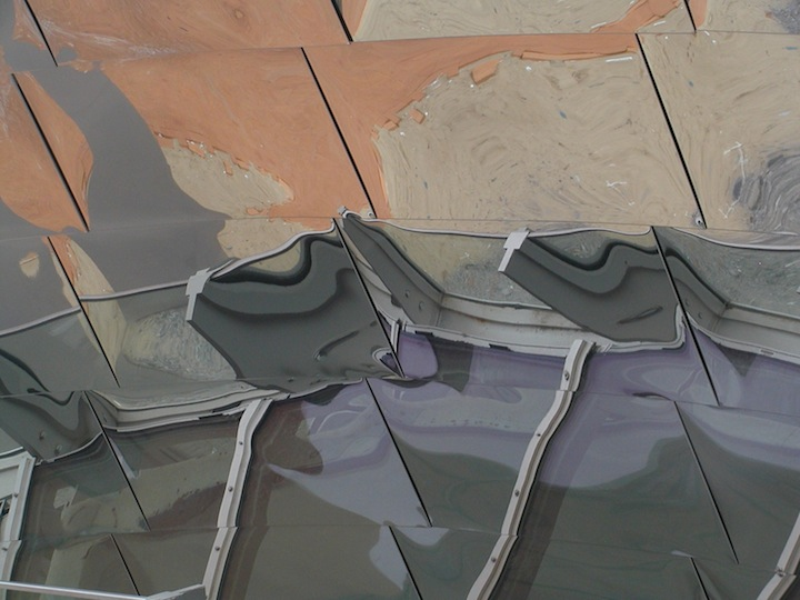 gehry reflection author lucke charlie