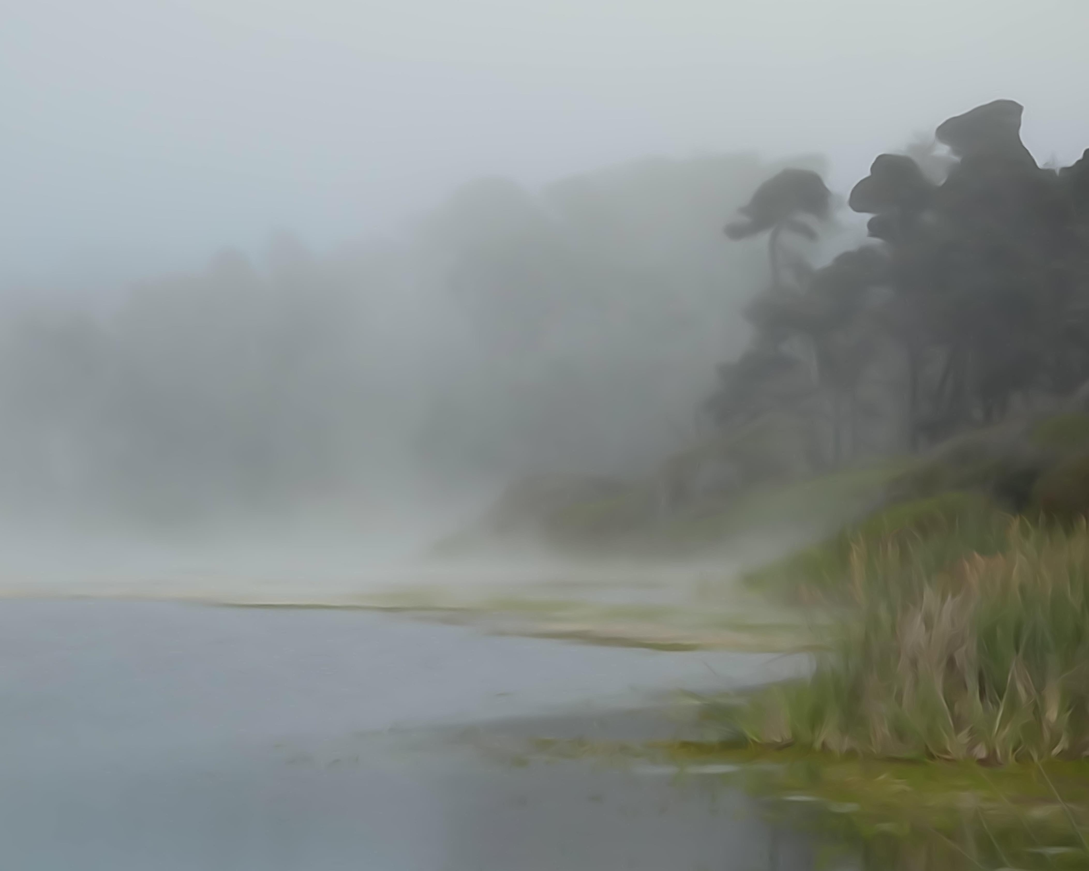fog on the pond author dreizler bob