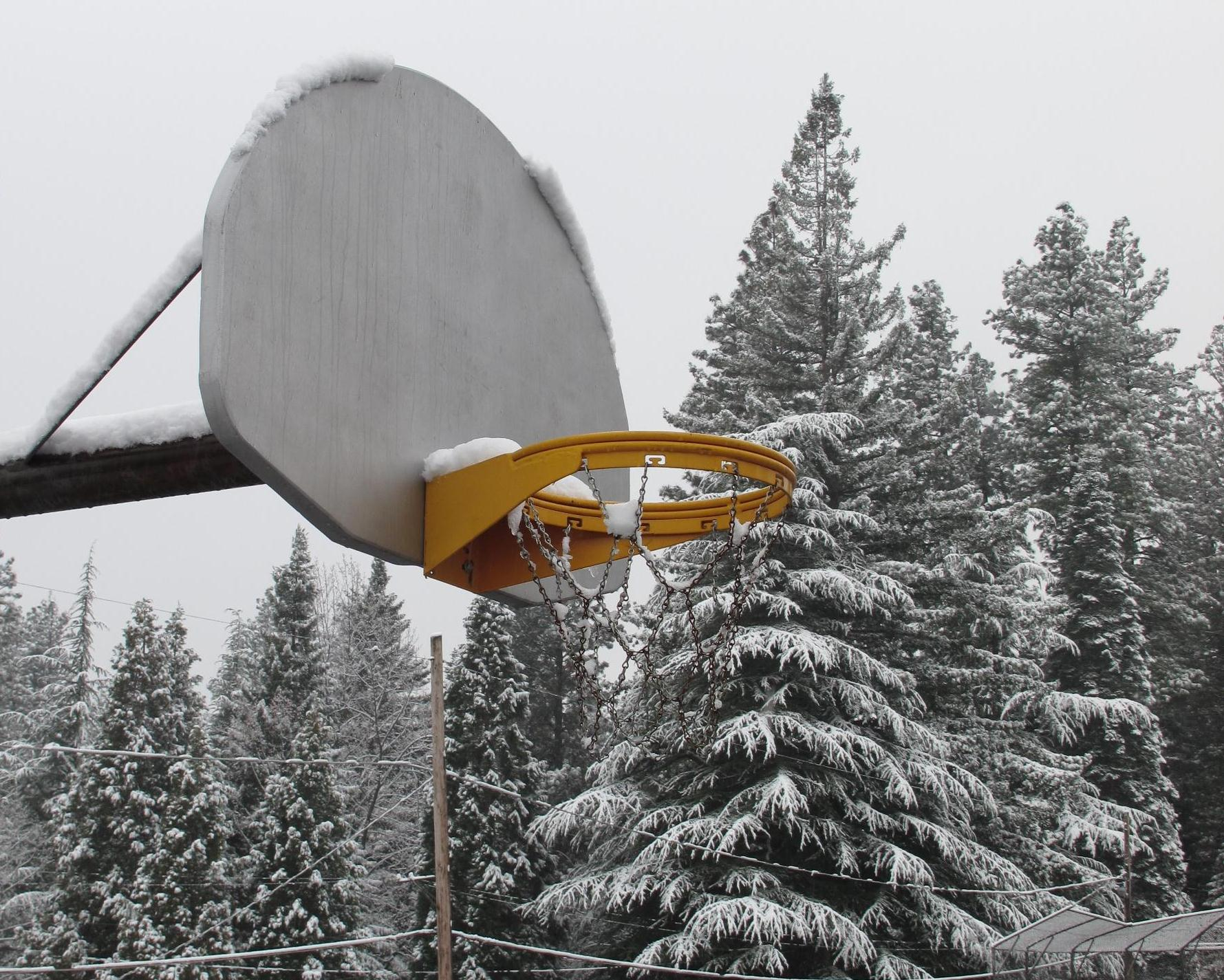 hoop in the winter author dreizler bob