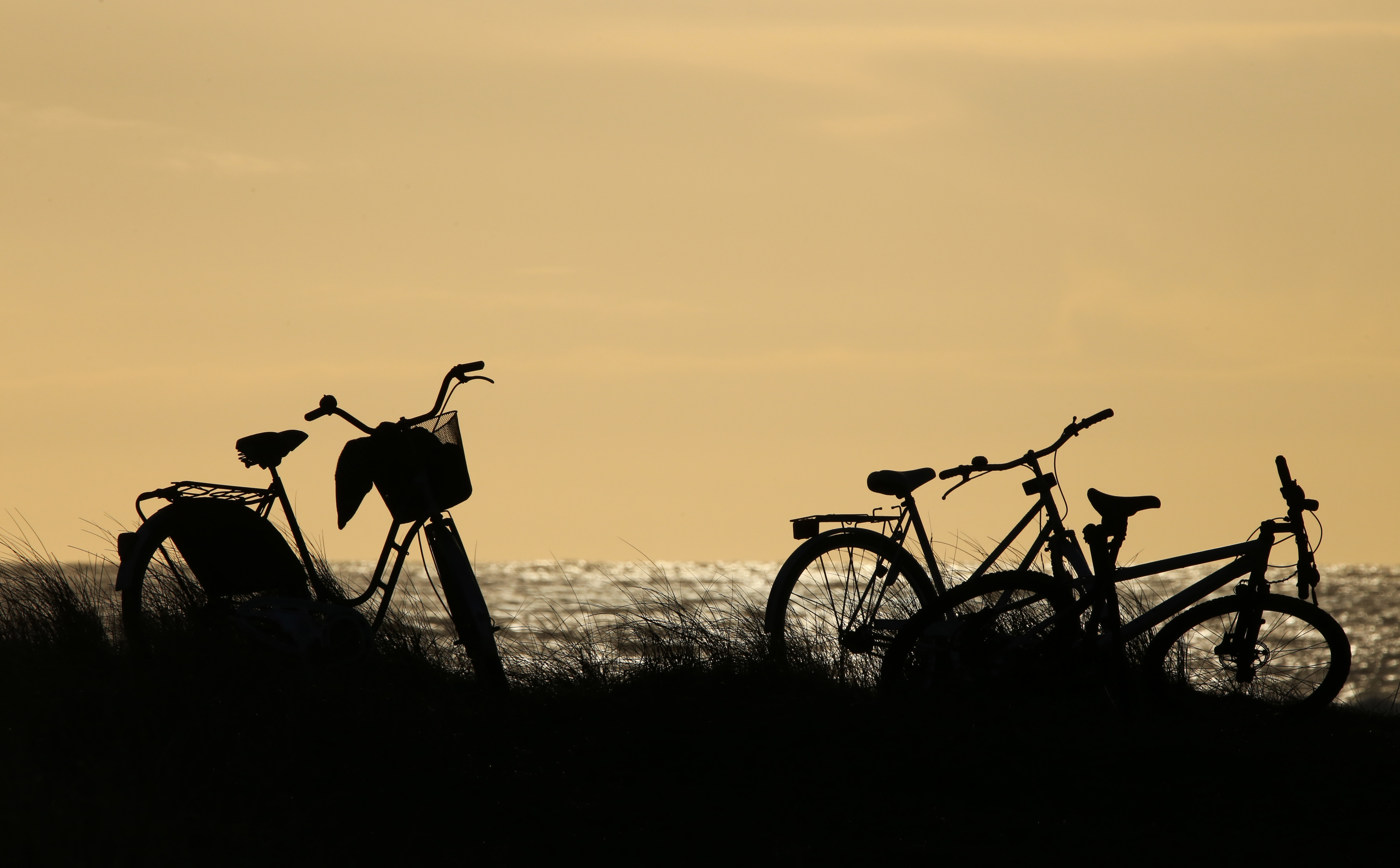 bicyckles at the beach author thomsen thor