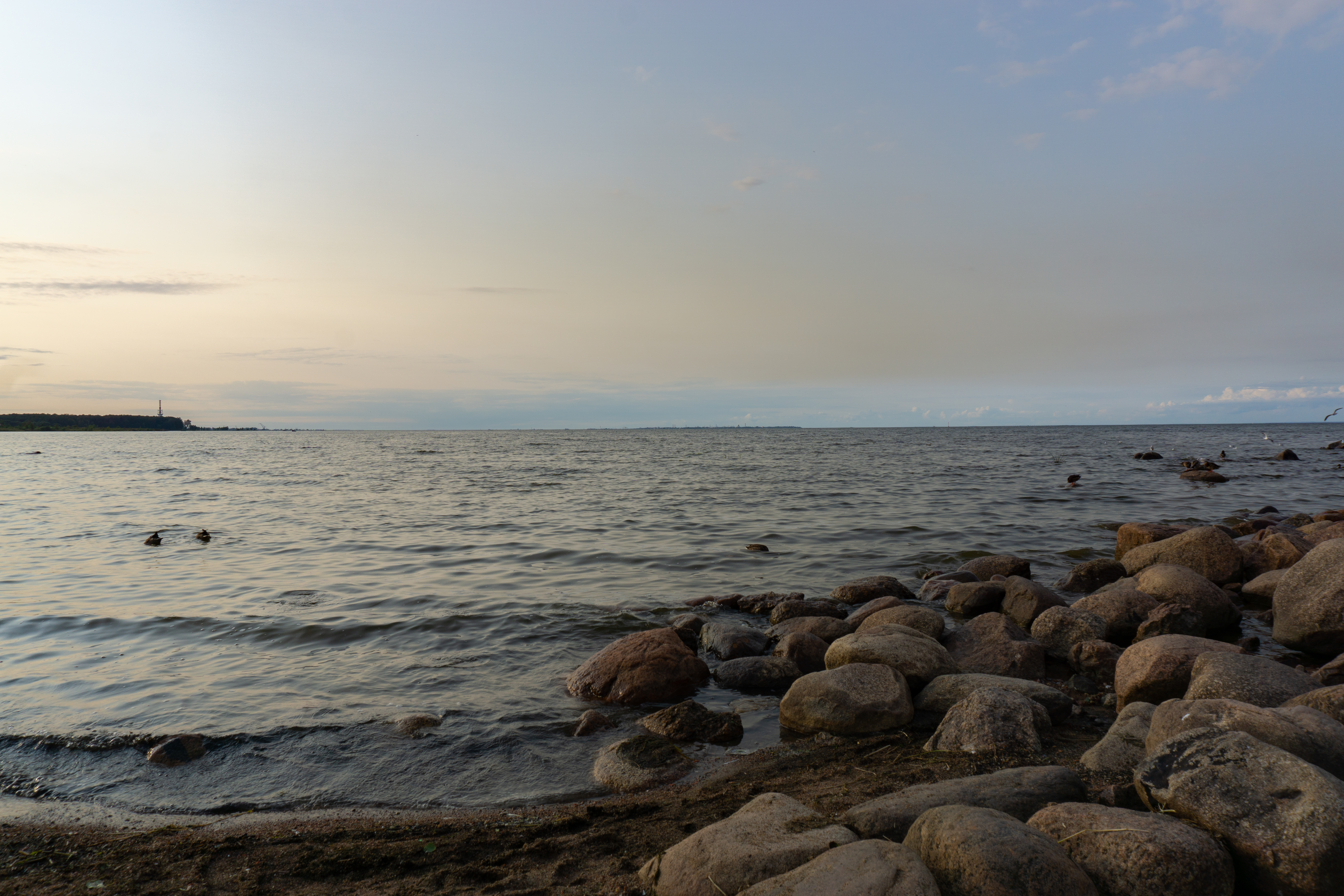 sunset at the gulf of finland author belikoff ale alexander