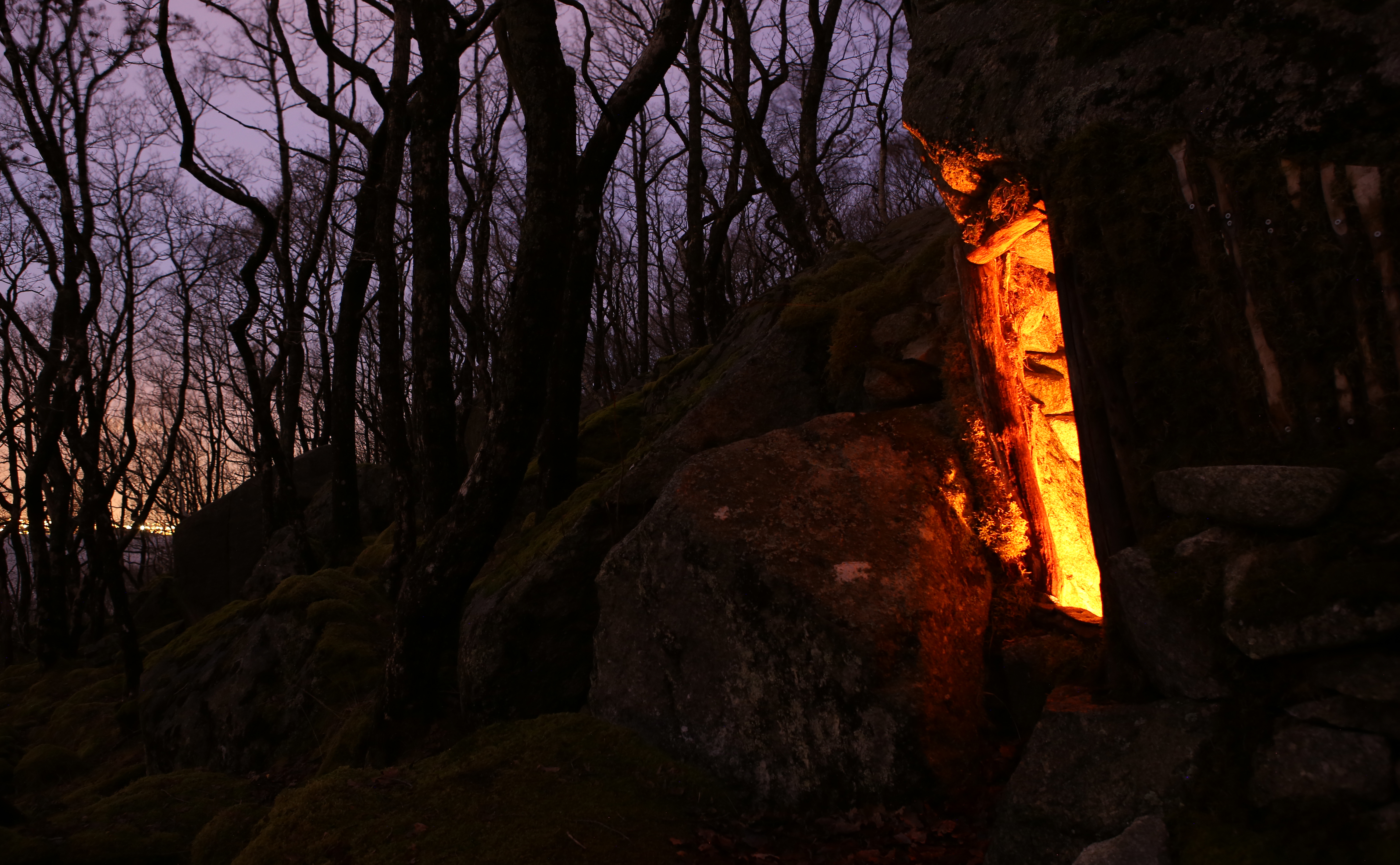 hideaway author thomsen thor crib under a rock g