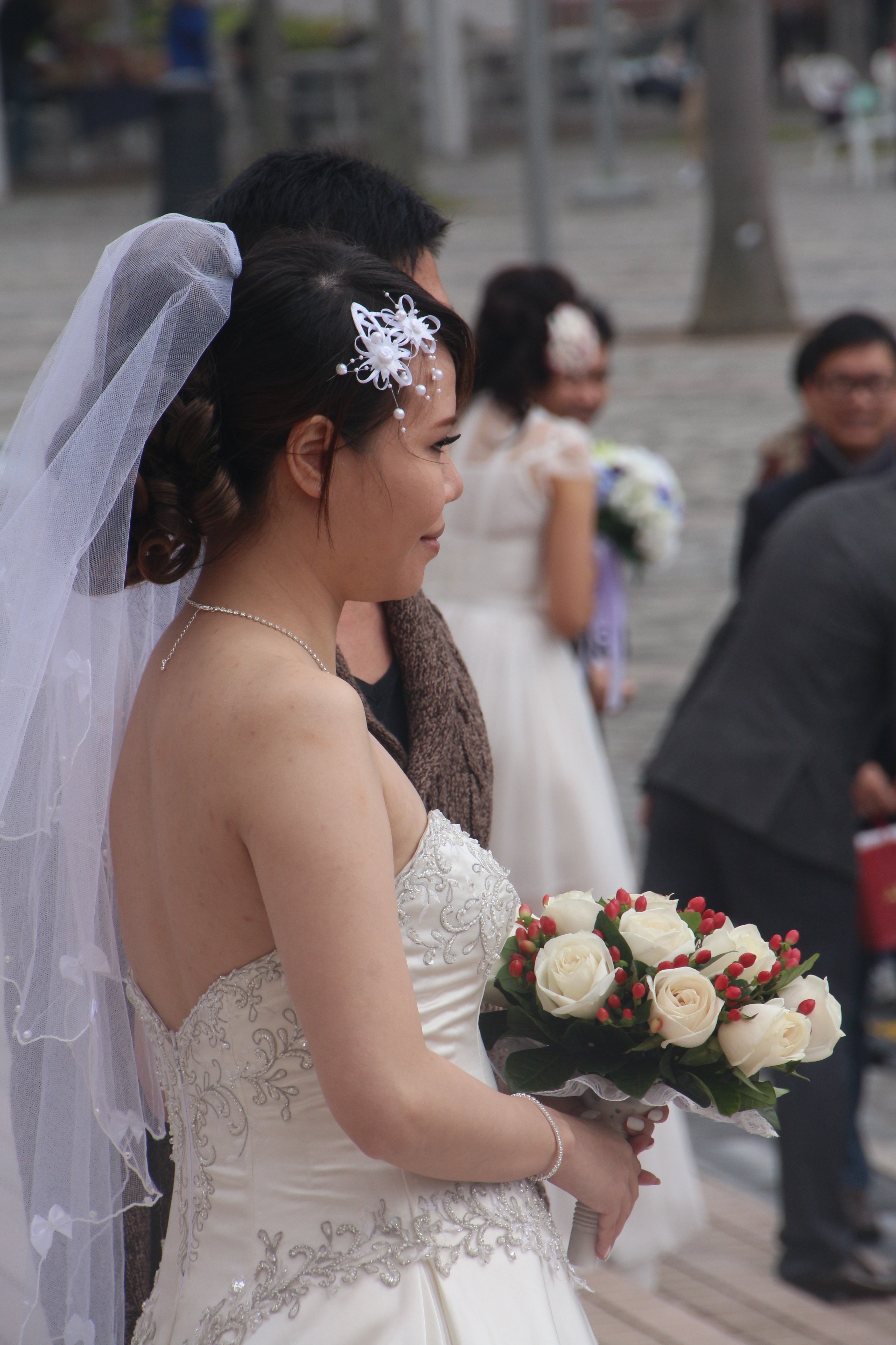 bride with bouquet author lucke charlie