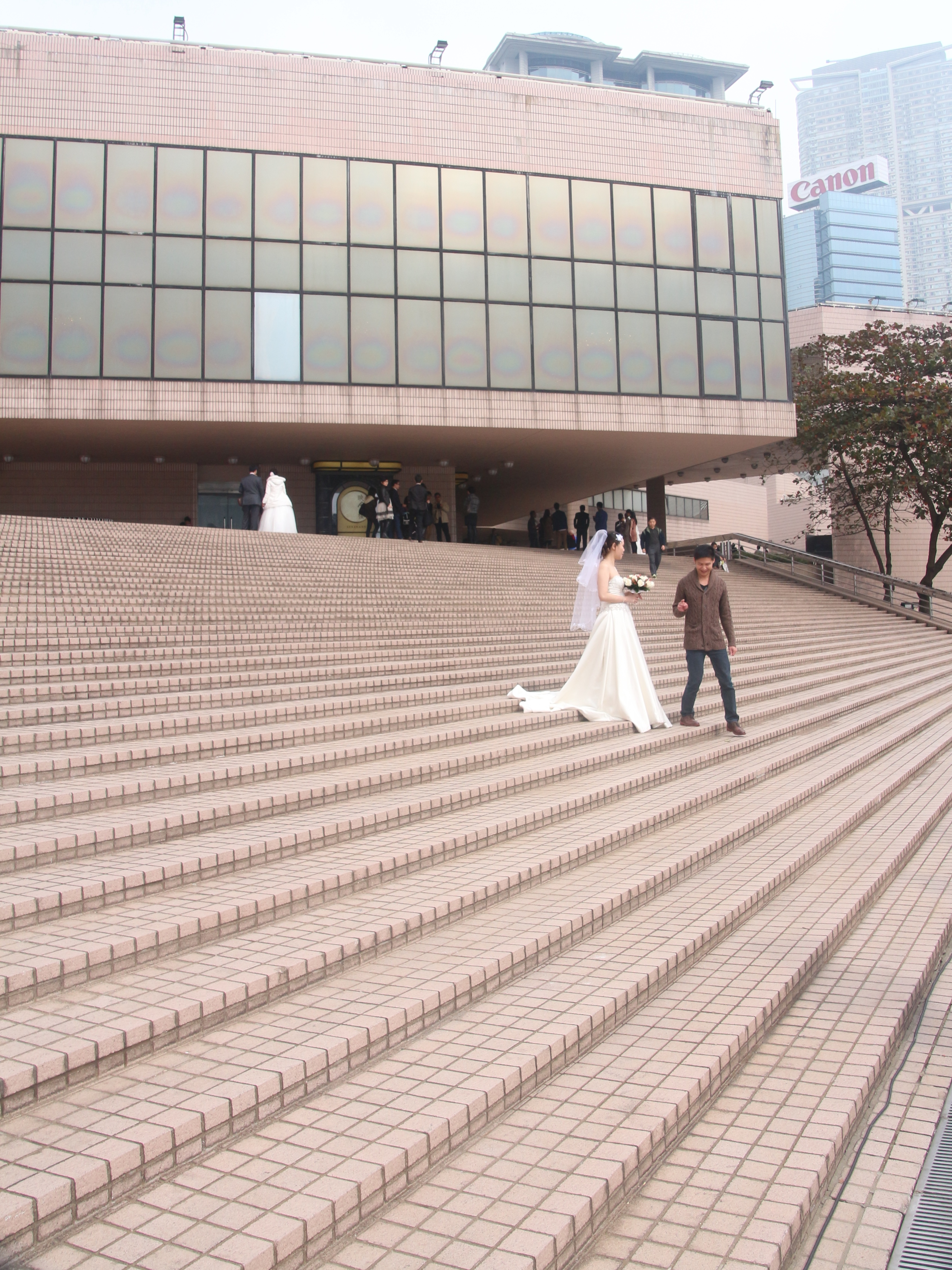 the wedding steps author lucke charlie witnessed