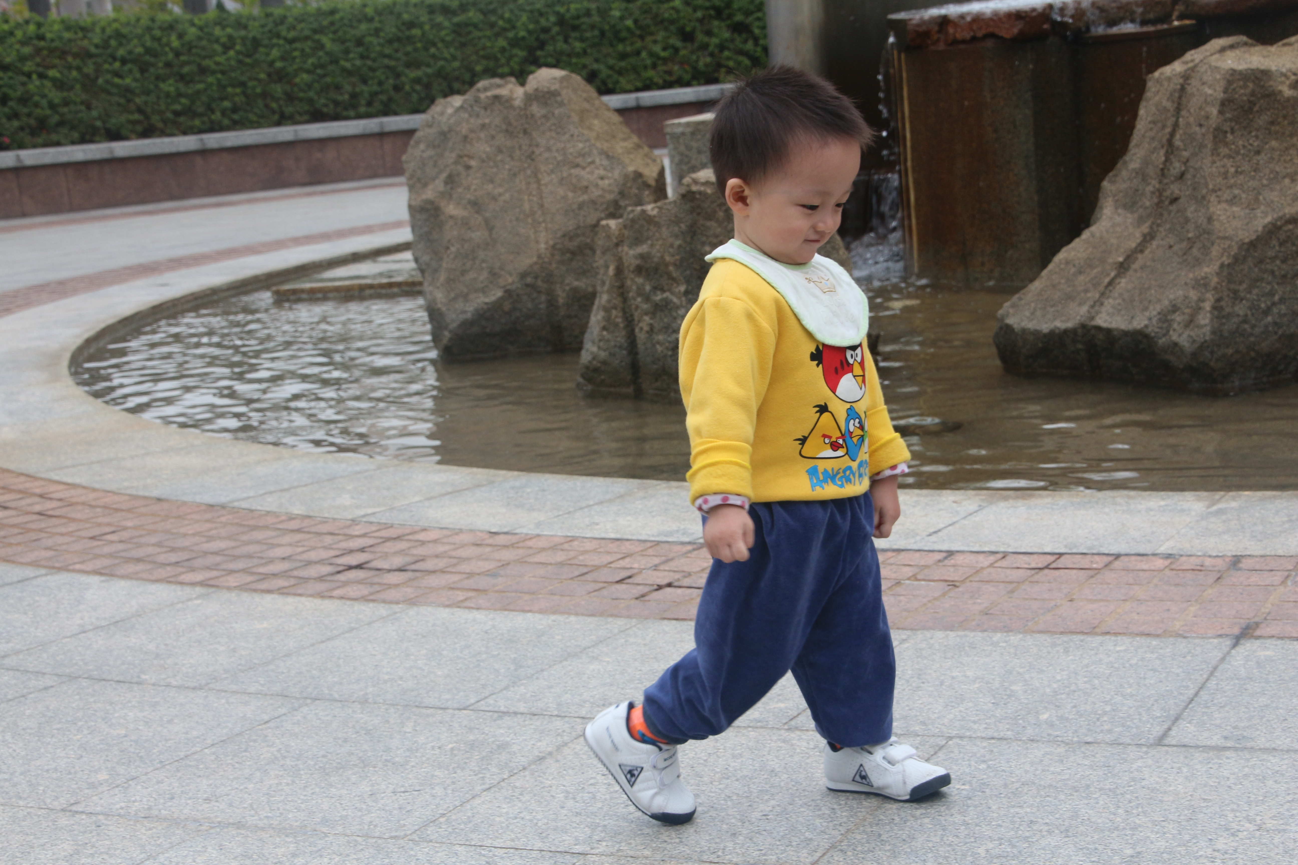 on his own with angry birds sweat shirt autho lucke charlie