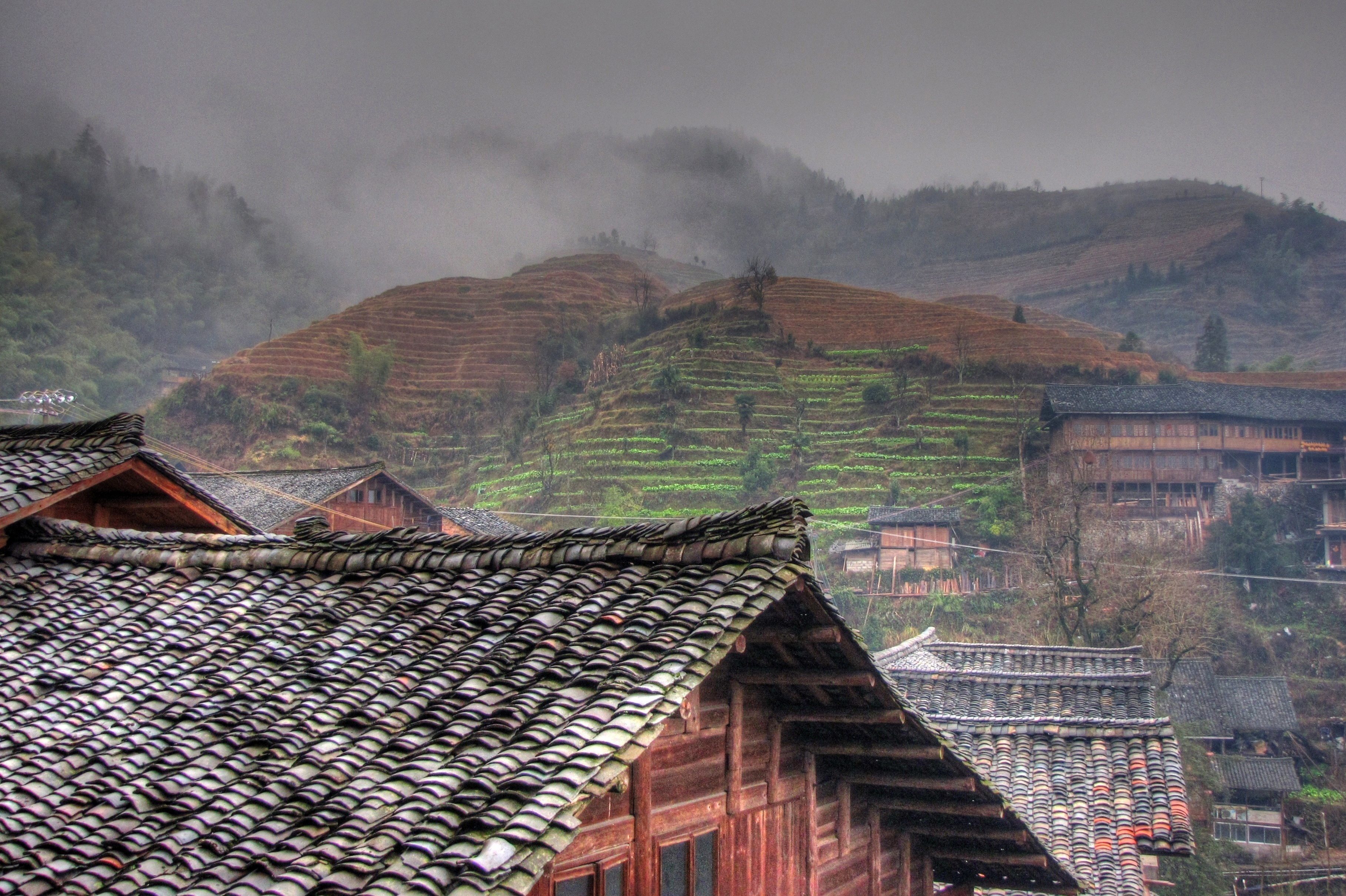 longji view author lucke charlie this was the vi