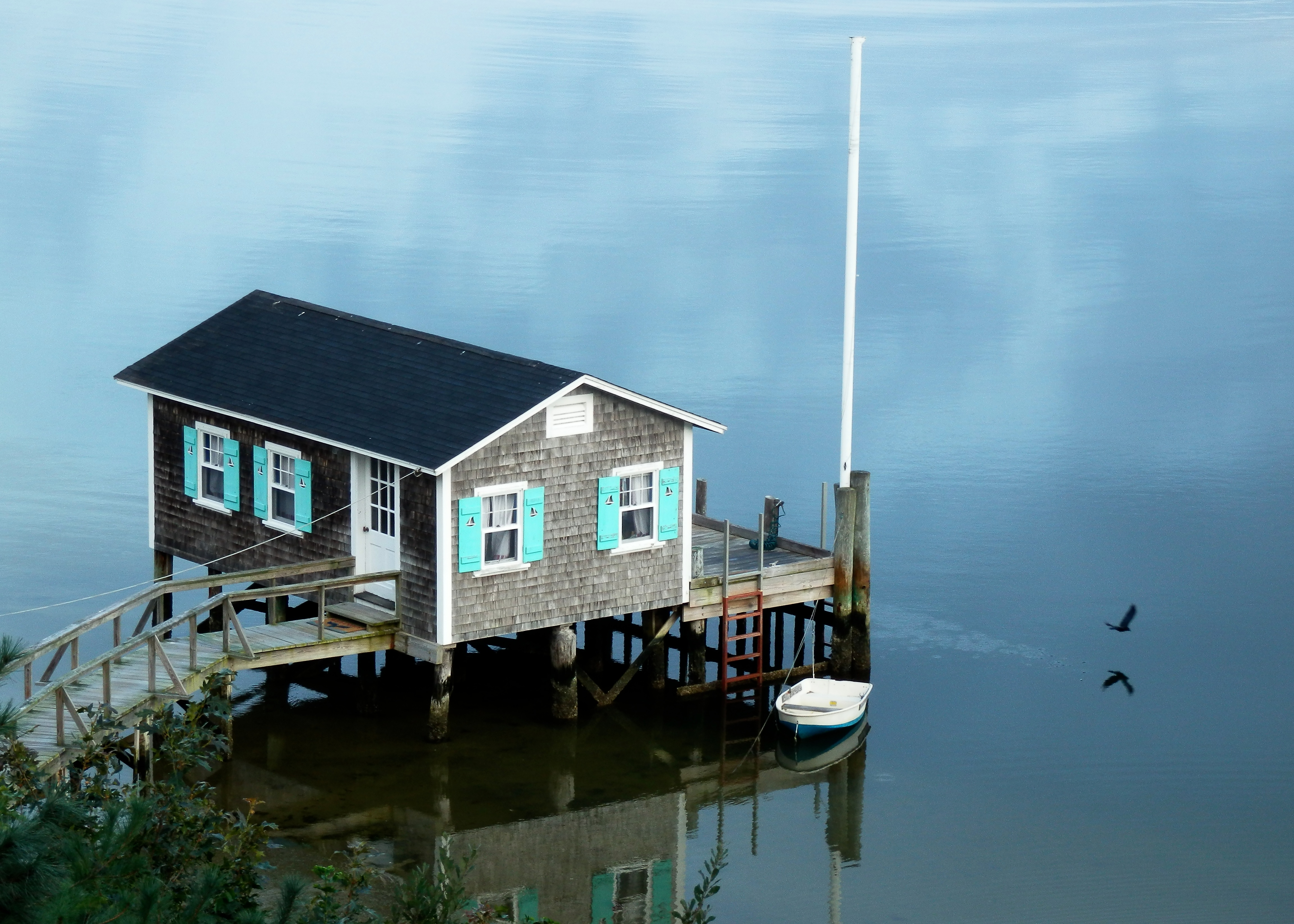 the boat house with bird author lucke charlie