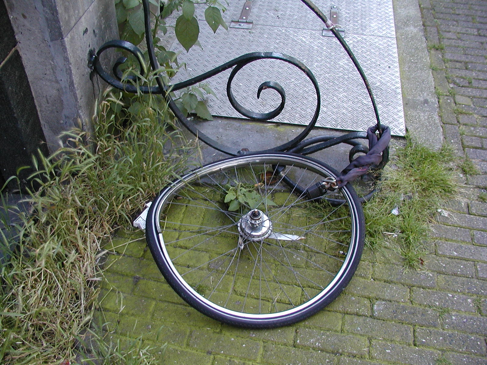 not much left author lucke charlie a bike thief