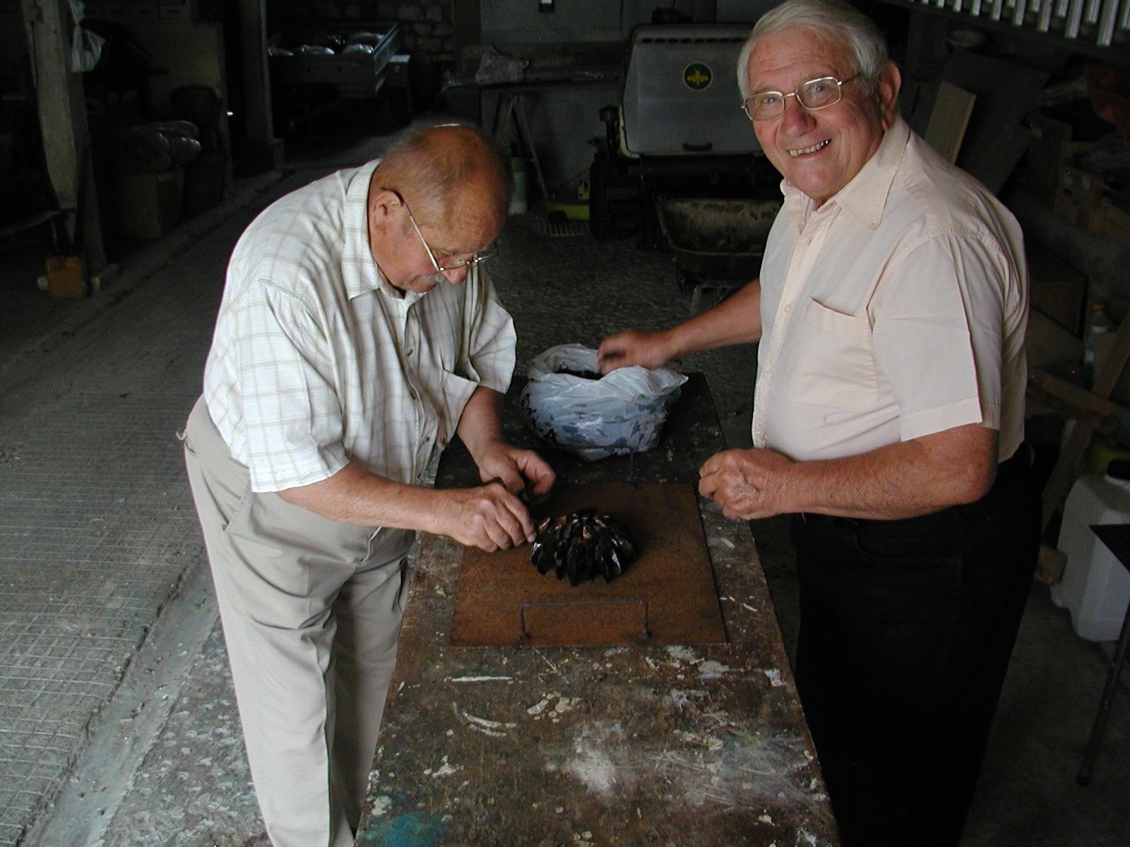 building a stand of mussels author lucke charlie