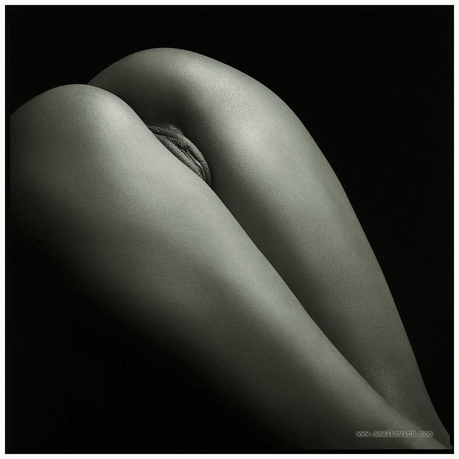 body author amelkovich igor hasselblad cw ilfor