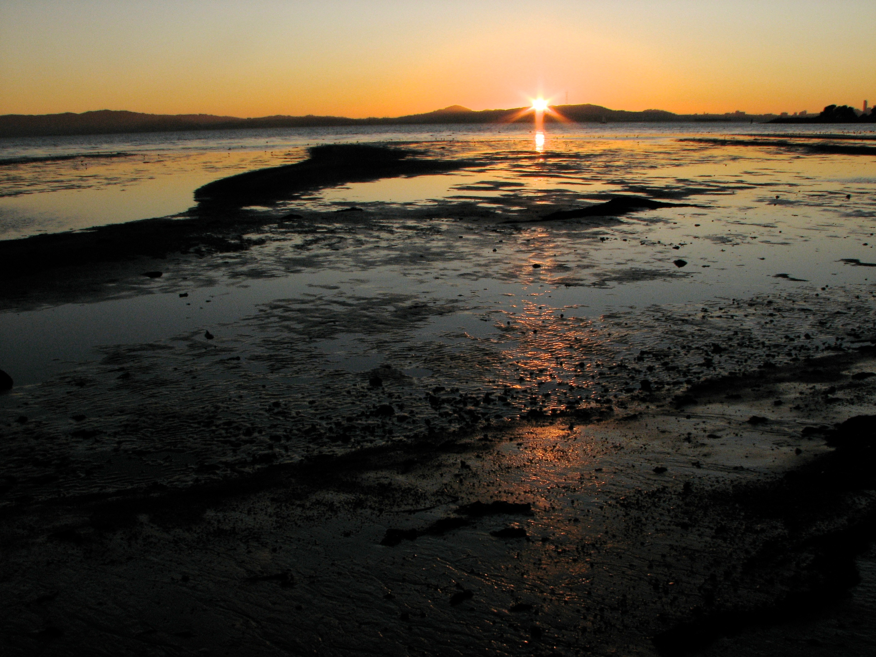 sunset at low tide author lucke charlie