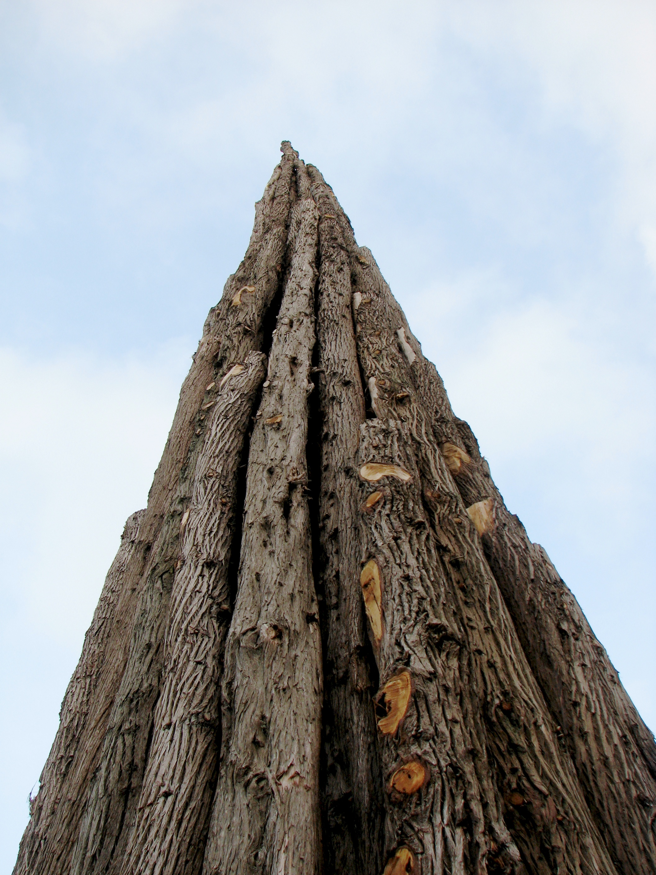 spire by andy goldsworthy author lucke charlie