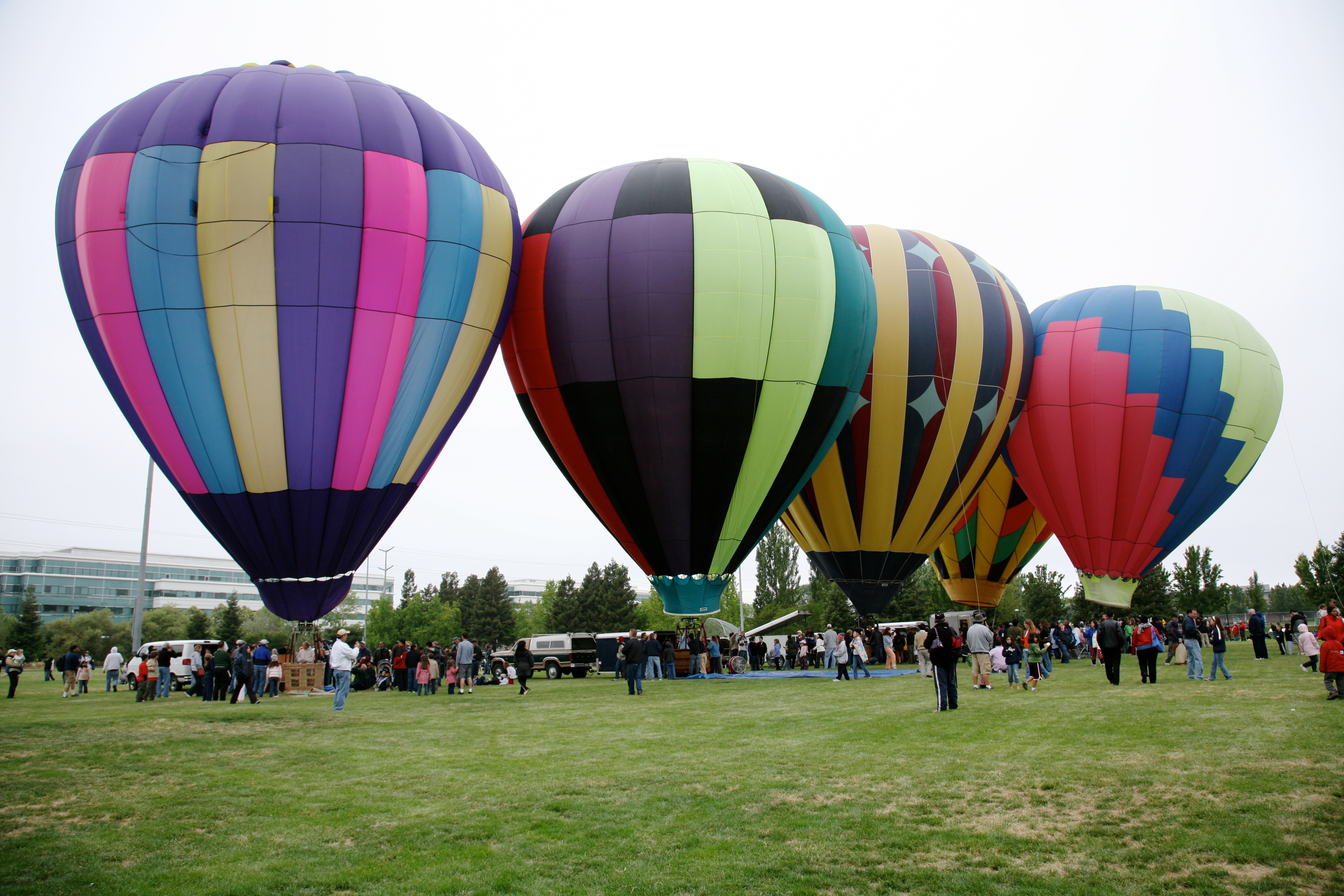 inflated and not flying author lucke charlie