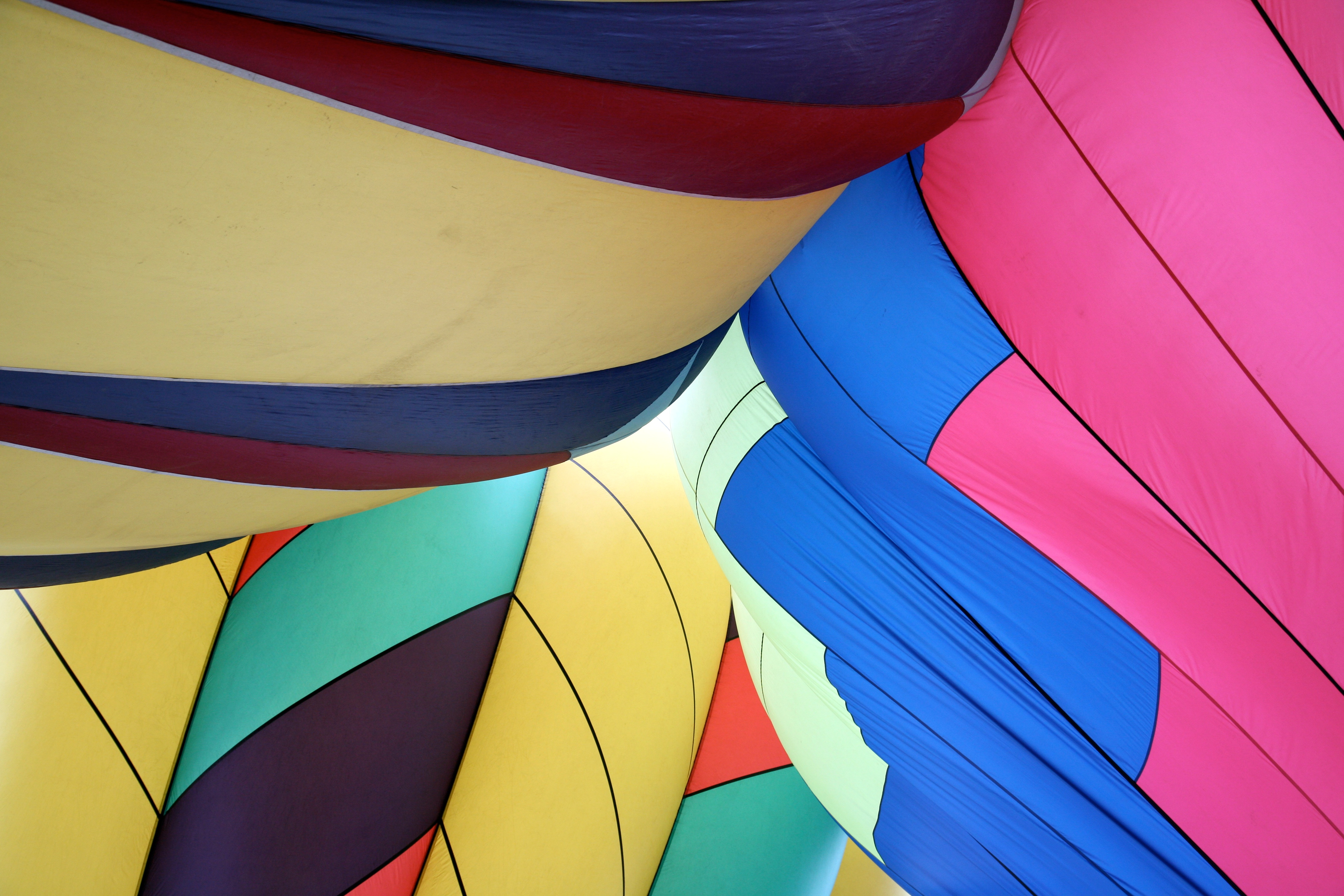 balloon togetherness author lucke charlie