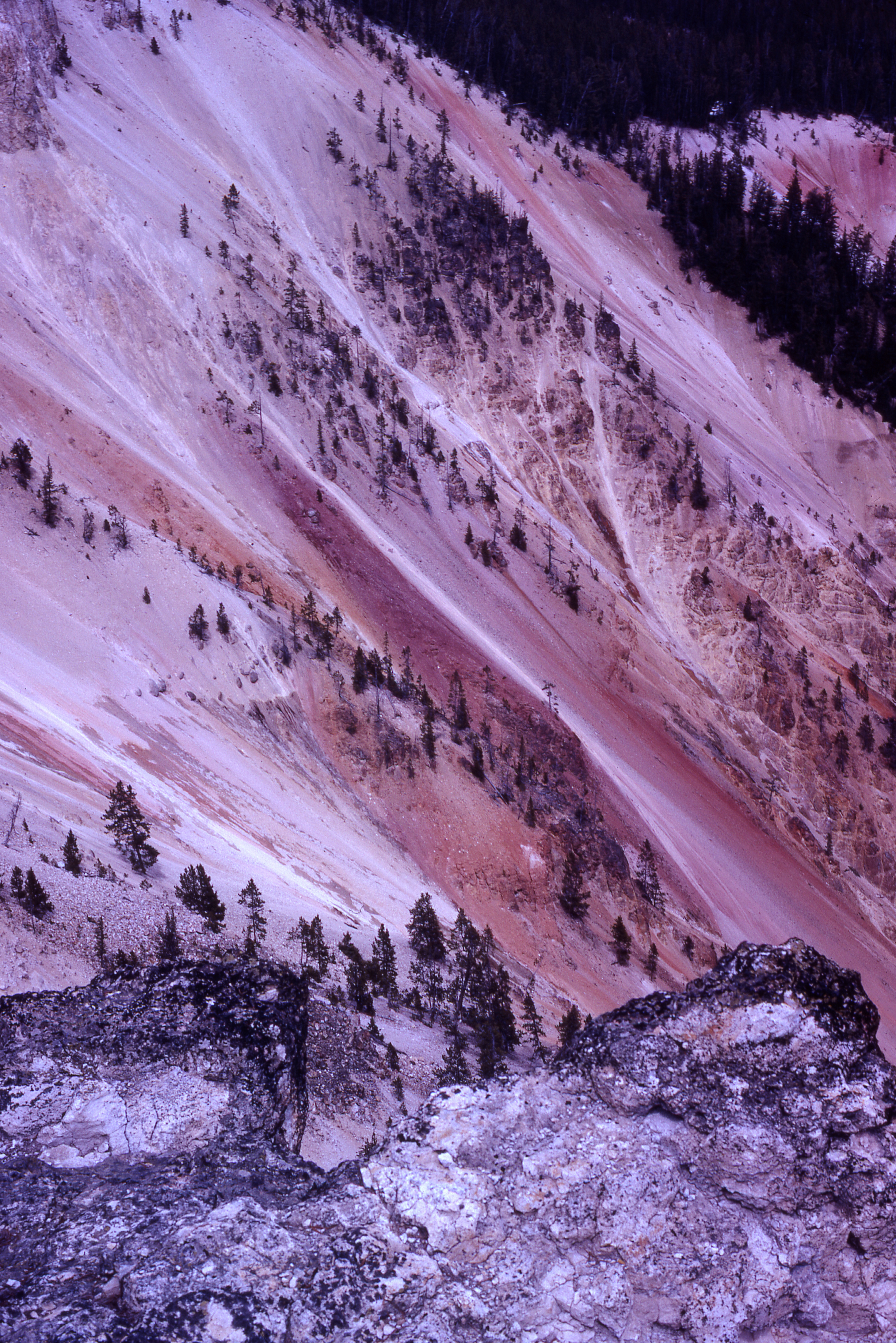 grand canyon of yellowstone author lucke charlie