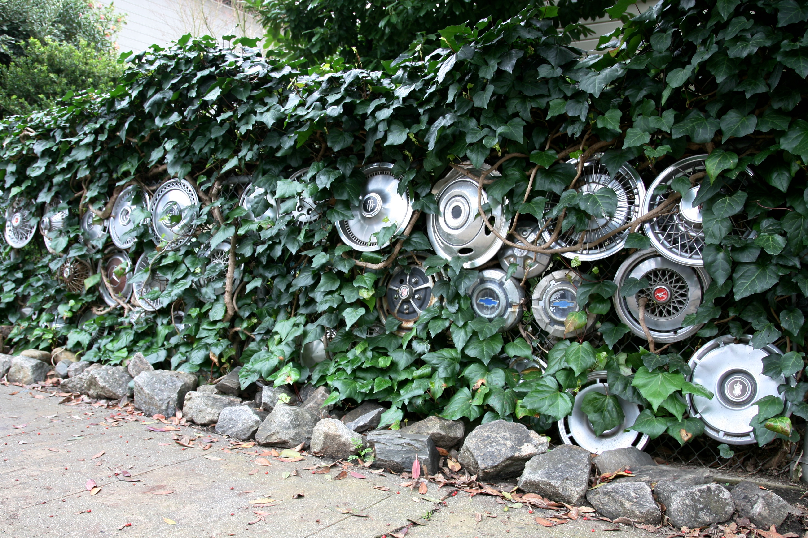 hub cap collection author lucke charlie