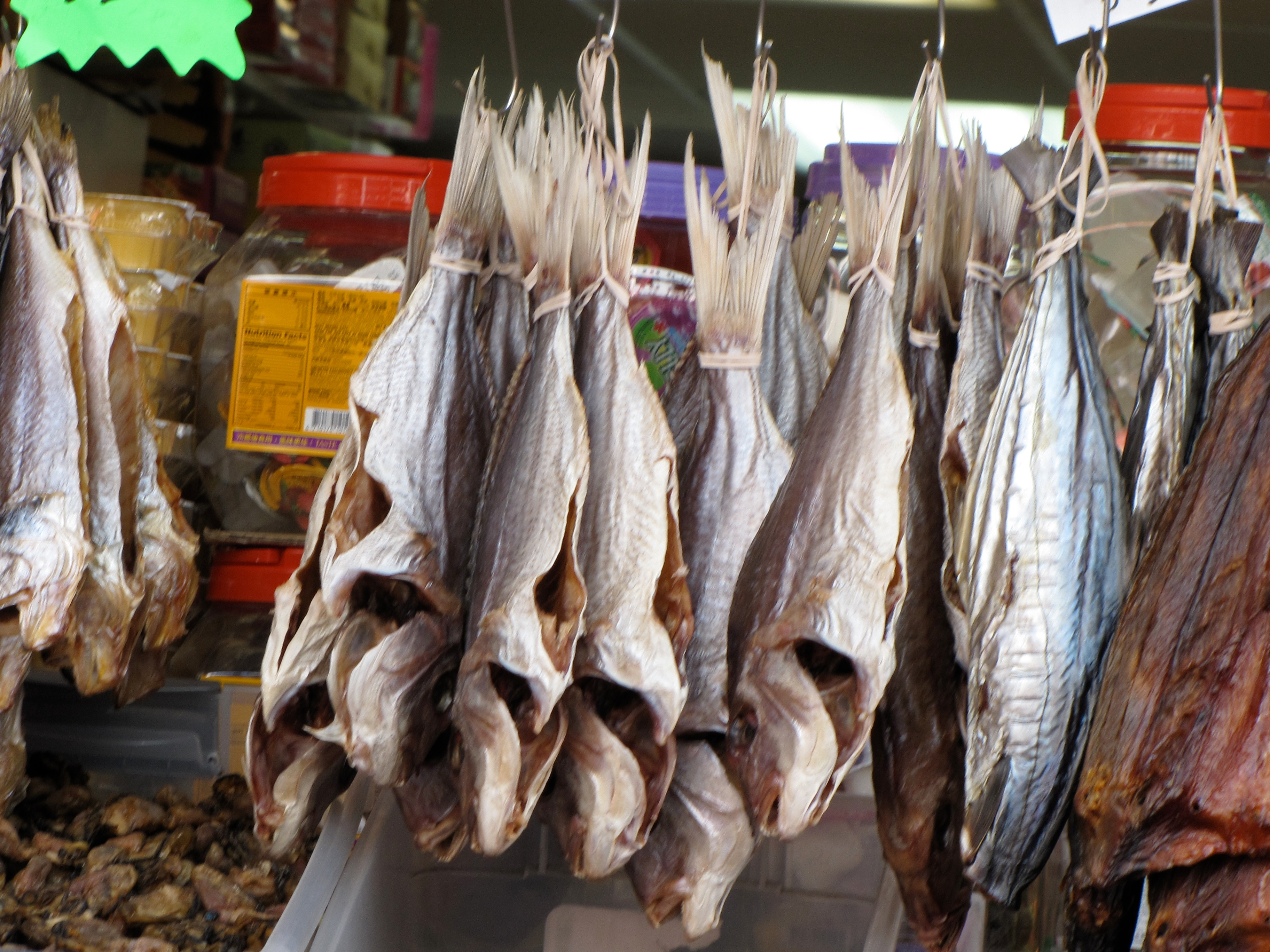 dried fish author lucke charlie