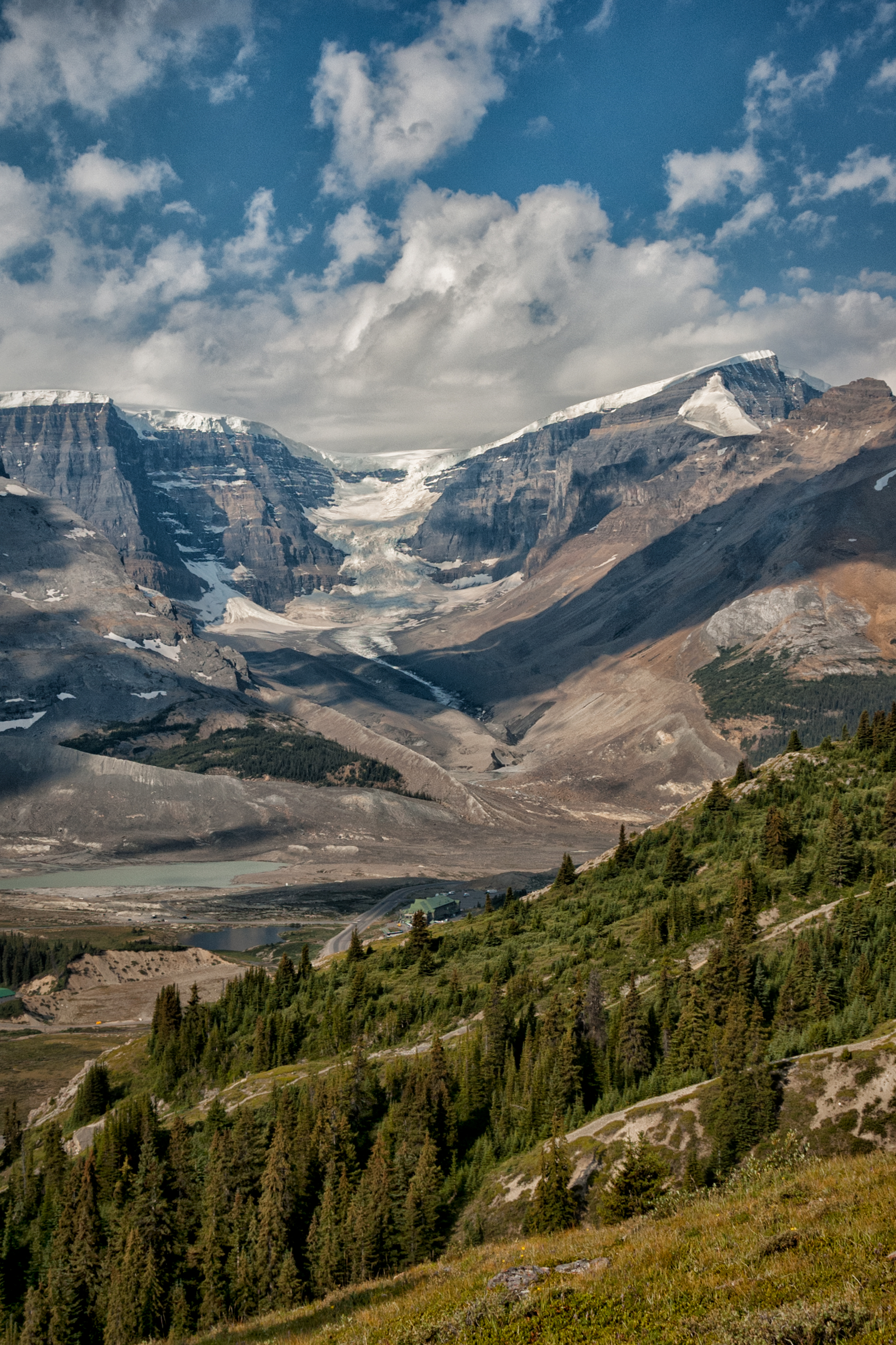 distant glacier author bloy bruce icefield wilco