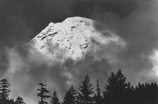 mount rainier from longmire author knowles scott m
