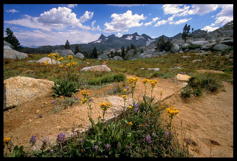 jmt between donohue pass and island author e ernst brian