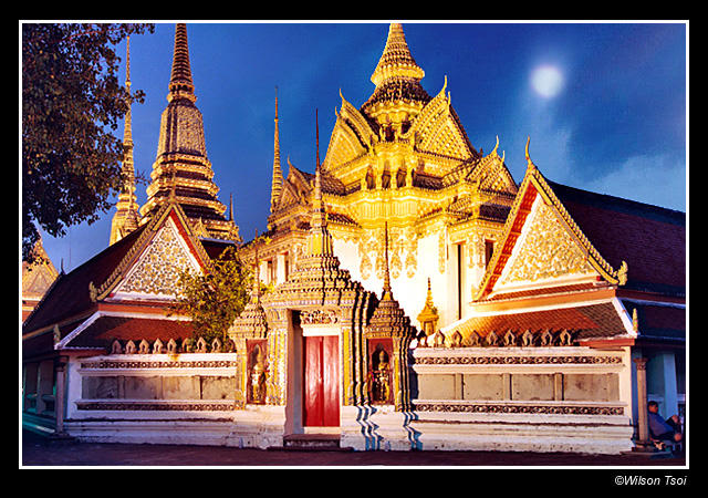 wat pho at night author tsoi wilson