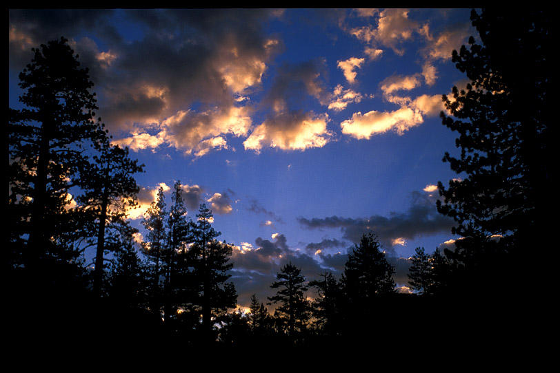 morning skyview from our campsite on mono creek a ernst brian