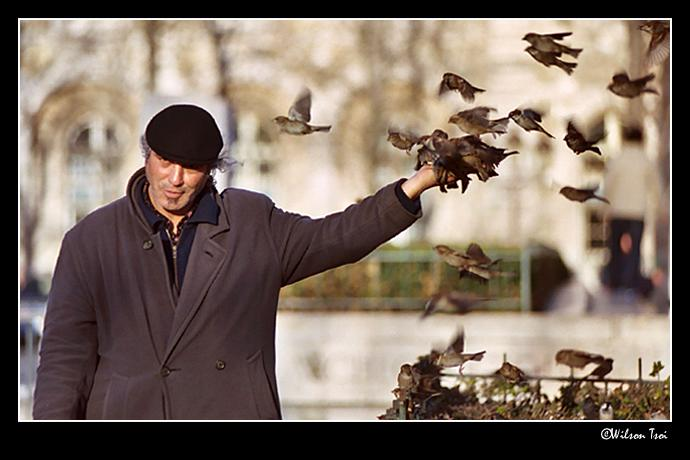 birds and master author tsoi wilson