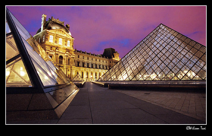 a night at the louvre author tsoi wilson
