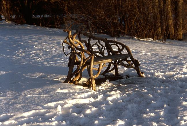 vine bench olana author hull ray