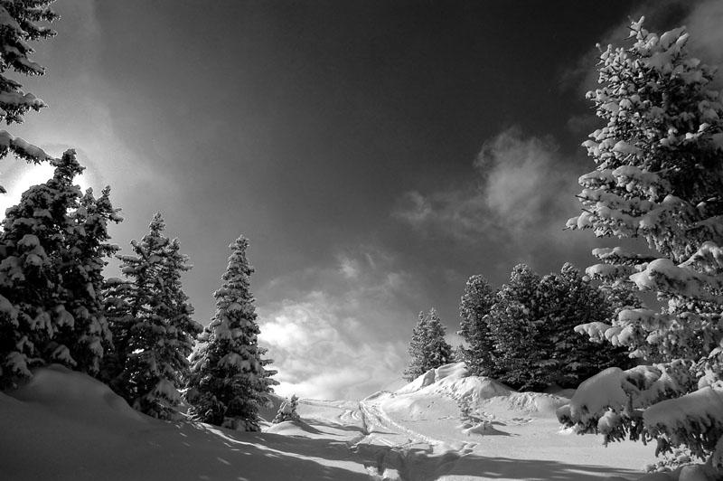 fresh snow up to courchevel author dupin eric
