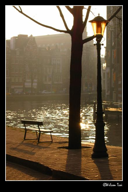 an afternoon in amsterdam author tsoi wilson