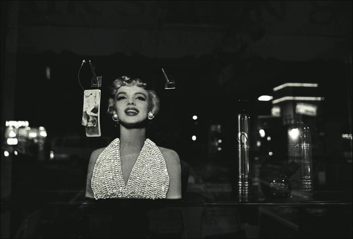 the still ever present marilyn author ray