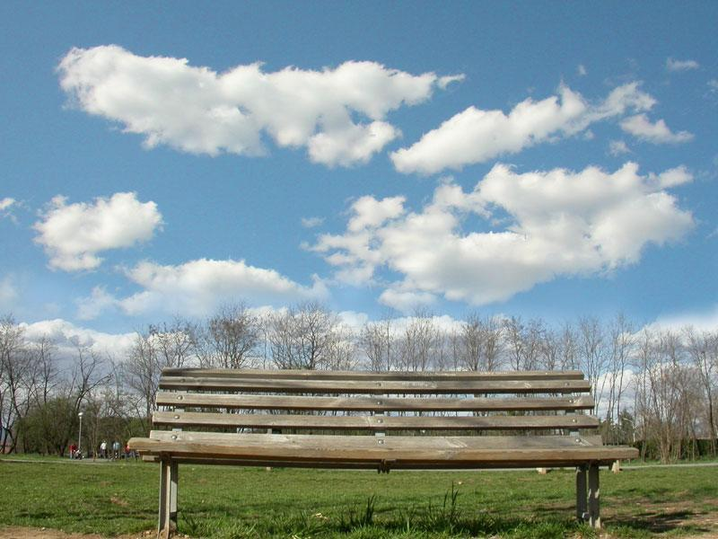 bench under the clouds author fumi cristina