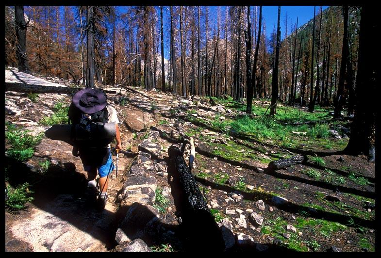 hiking through burned section of trail author ern ernst brian